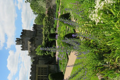 Gardens  J (6).jpg