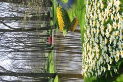 Gardens R (10).jpg