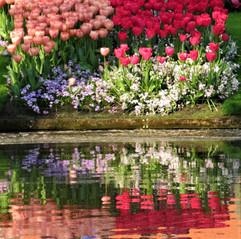 Spring time 19 (6).jpg
