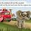 Thumbnail: Isaac the Elephant