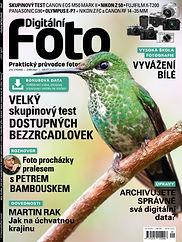 001.DF213_COVER.jpg