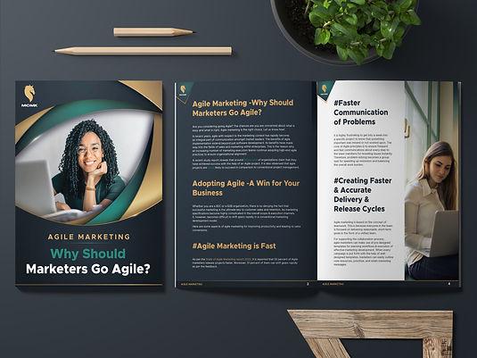 Thumbnail image of ebook Girl looking at computer screen