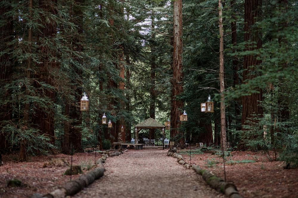 Two Woods Wedding Coordinator