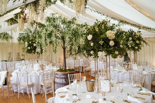 Tree Wedding Design.jpg