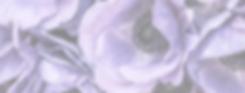 Purple Header.png