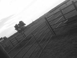 Oklahoma Views