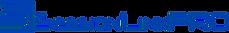 SLP-logo-medium_edited_edited.png
