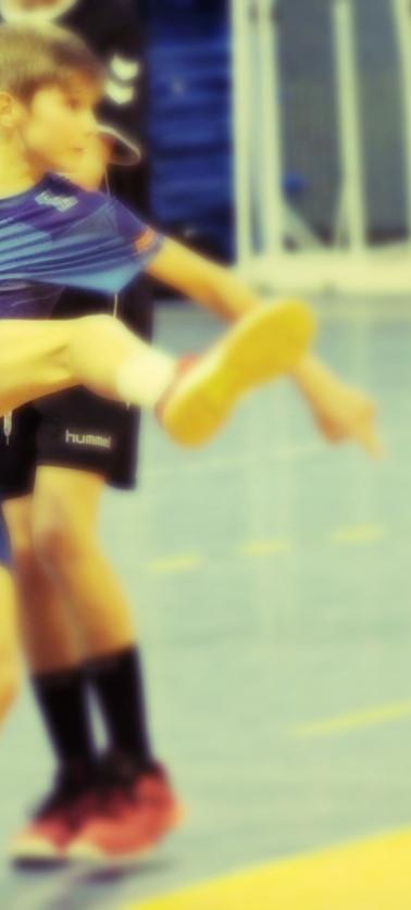 clermont handball