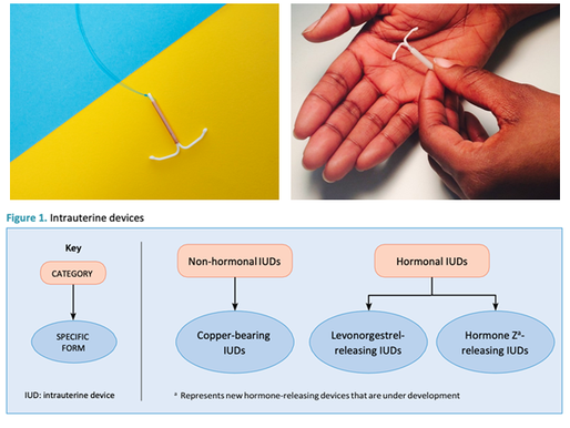 WHO issues statement on hormonal IUD nomenclature