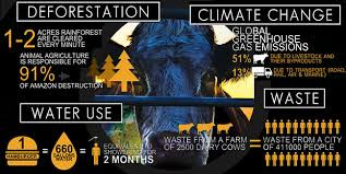 Environmental Destruction - Cowspiracy