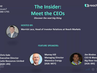 The Insider: Meet the CEOs Webcast Replay