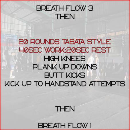 Daily Basic Workout 15/6/2020