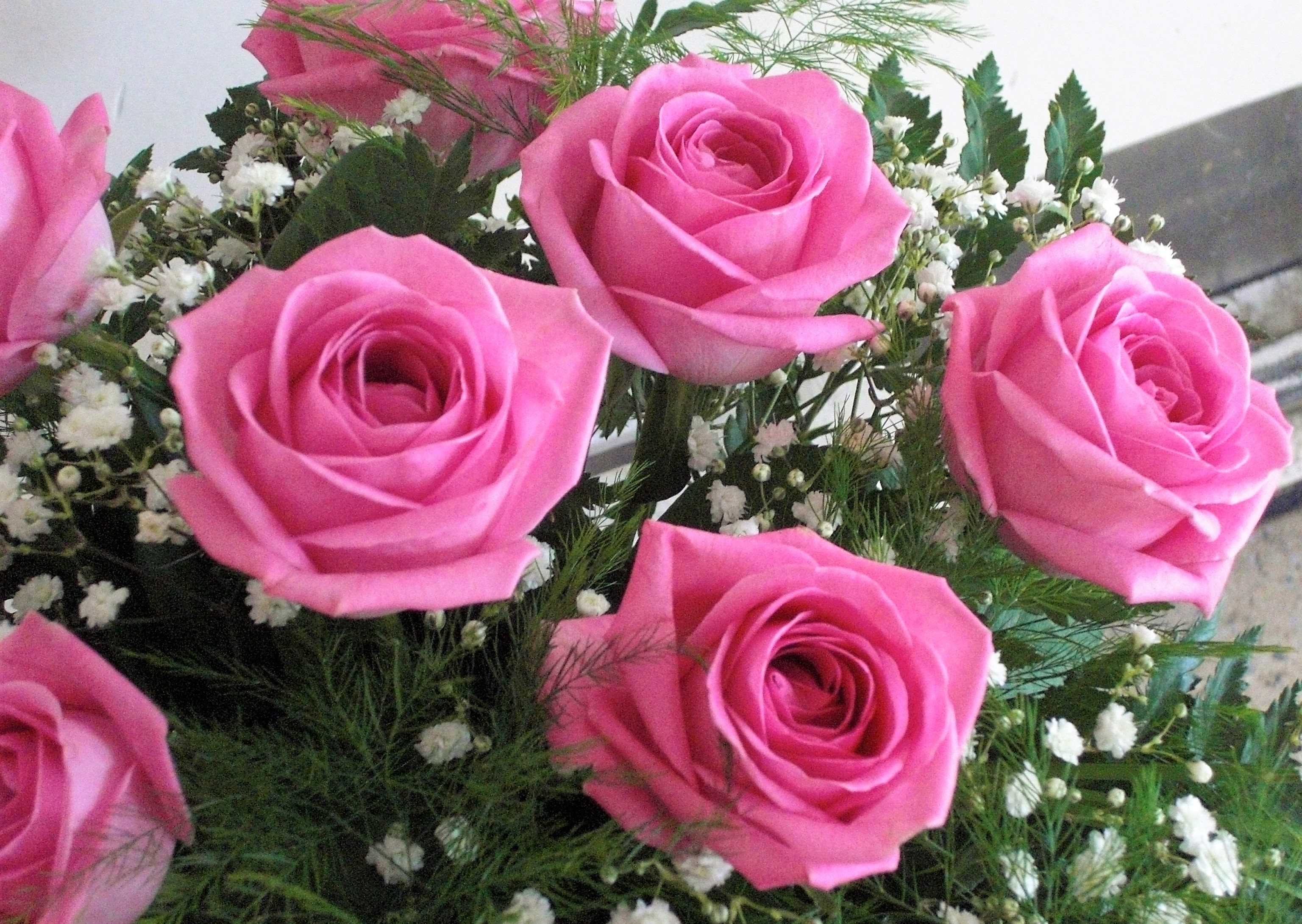 Roses de color