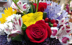 Variats amb roses