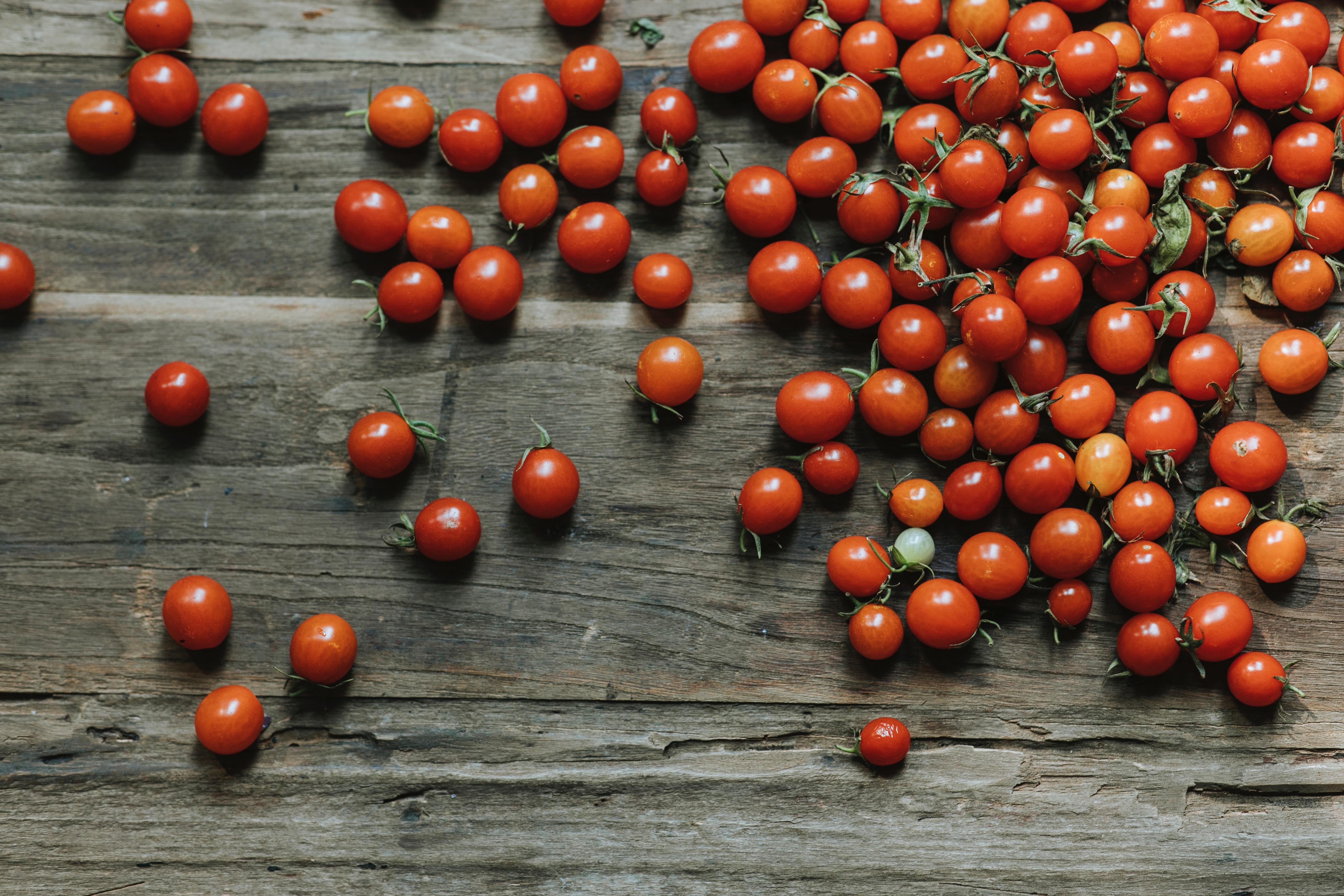 cherry-tomatoes-fresh-harvest-1657104