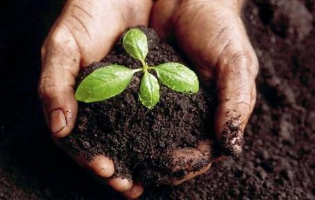 Let's talk about soil quality