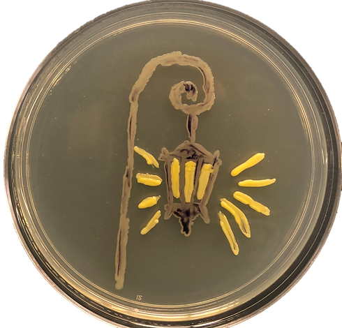 microbe_lamp.png