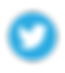 twitter-icon-vector.png