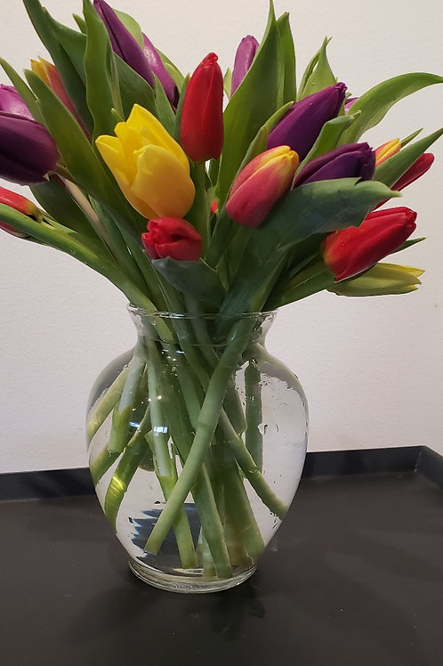 Mixed Tulips in Vase
