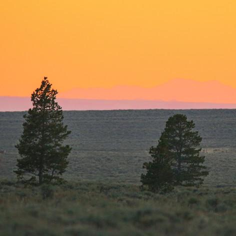 Aerosol sunset