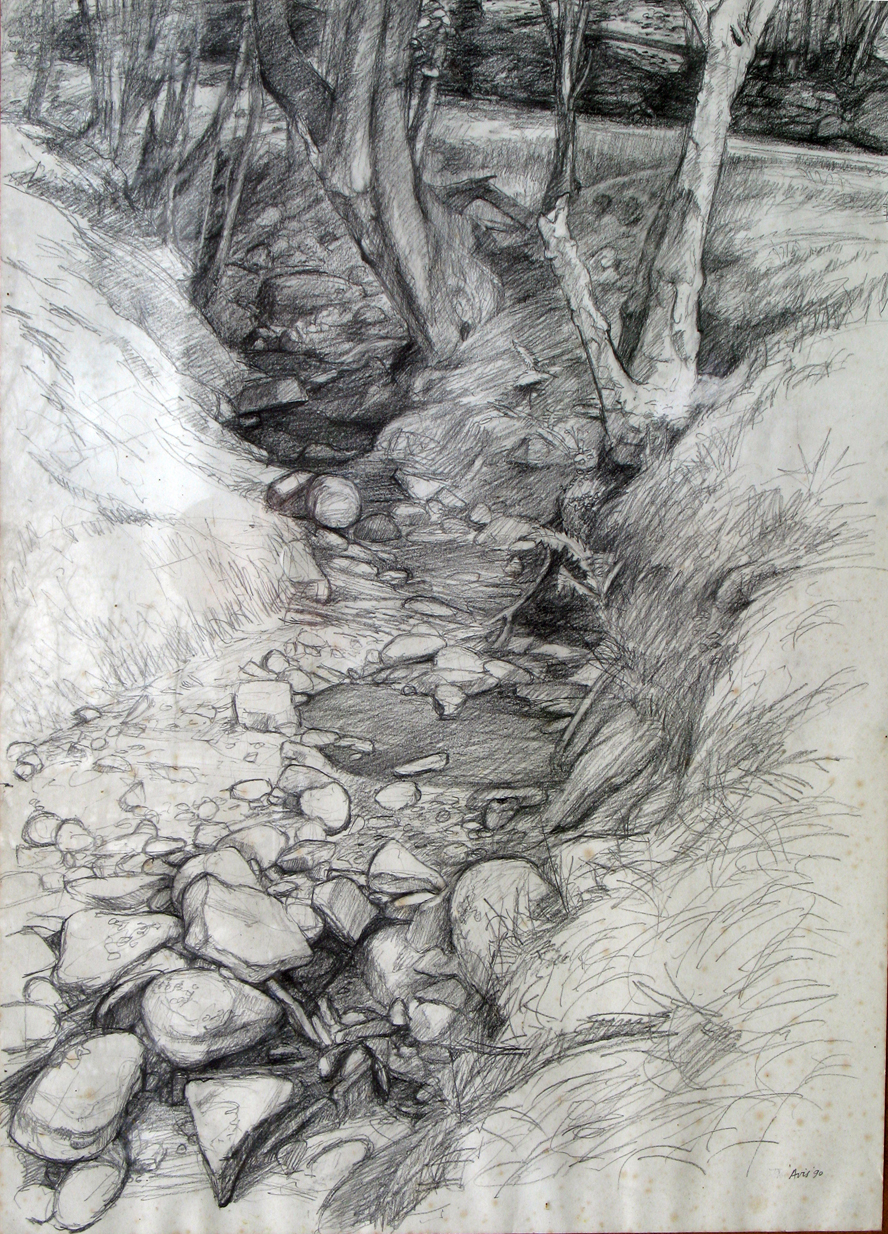 Dry River Bed, South Wales