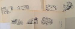 Book Illustration Proof Prints