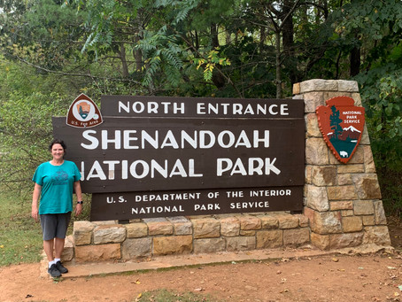 Shenandoah National Park!