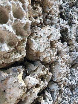 Lara Stone wall.jpg