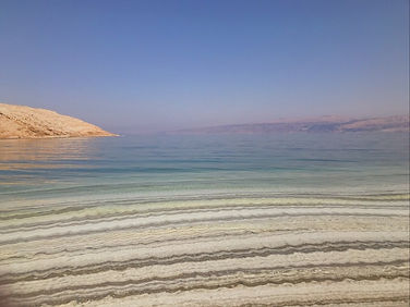 Dahlia Mohl wavy water.JPG