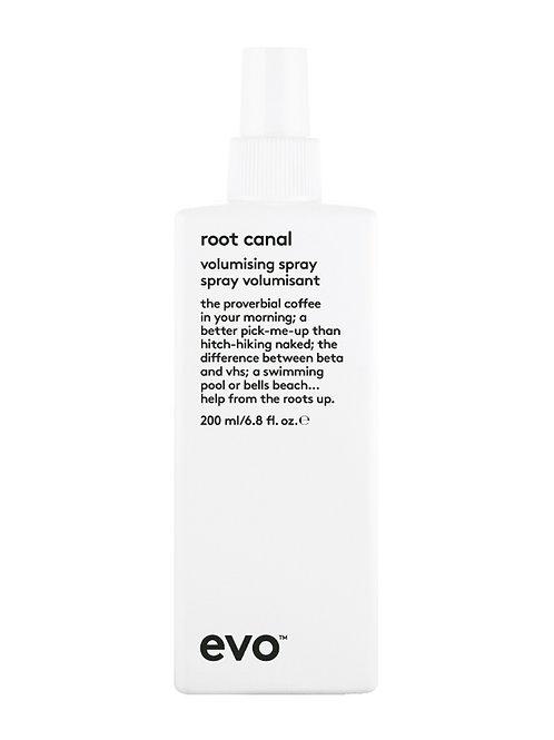 EVO Root Canal Voluminising Spray