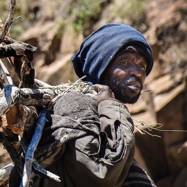 The shepherd (Lesotho)