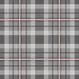 grey and pink plaid.jpg