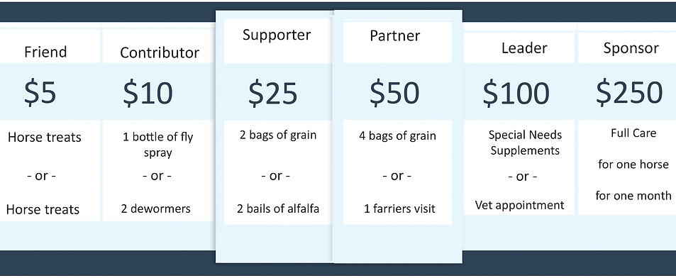donations page 2.png