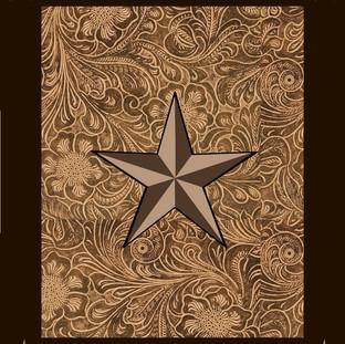 TX-Star-4.jpg