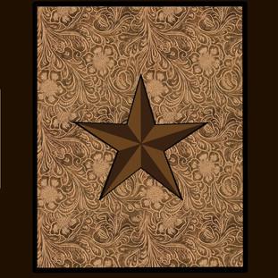 Lone Star for Packaging.jpg