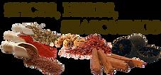 Spices, Herbs, Seasonings 01.png