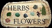 Herbs Flowers 01.png