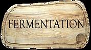 Fermentation 01.png