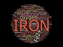Iron Infusions Increase hemoglobin levels and anemia