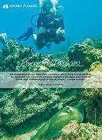Destination Guadeloupe-Tropicalsub Diving- Plongée sous marine