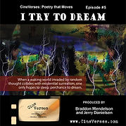 I Try to Dream.jpeg