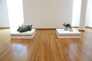 Des Moines Art Center - Solo Exhibition (Devour and Human Shadow)