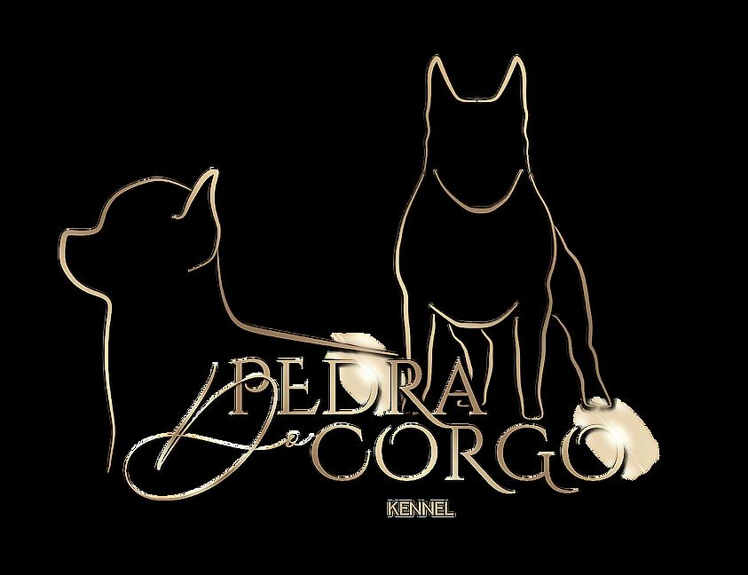 Logo Pedra Do Corgo