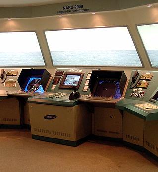 naru2000-1.jpg