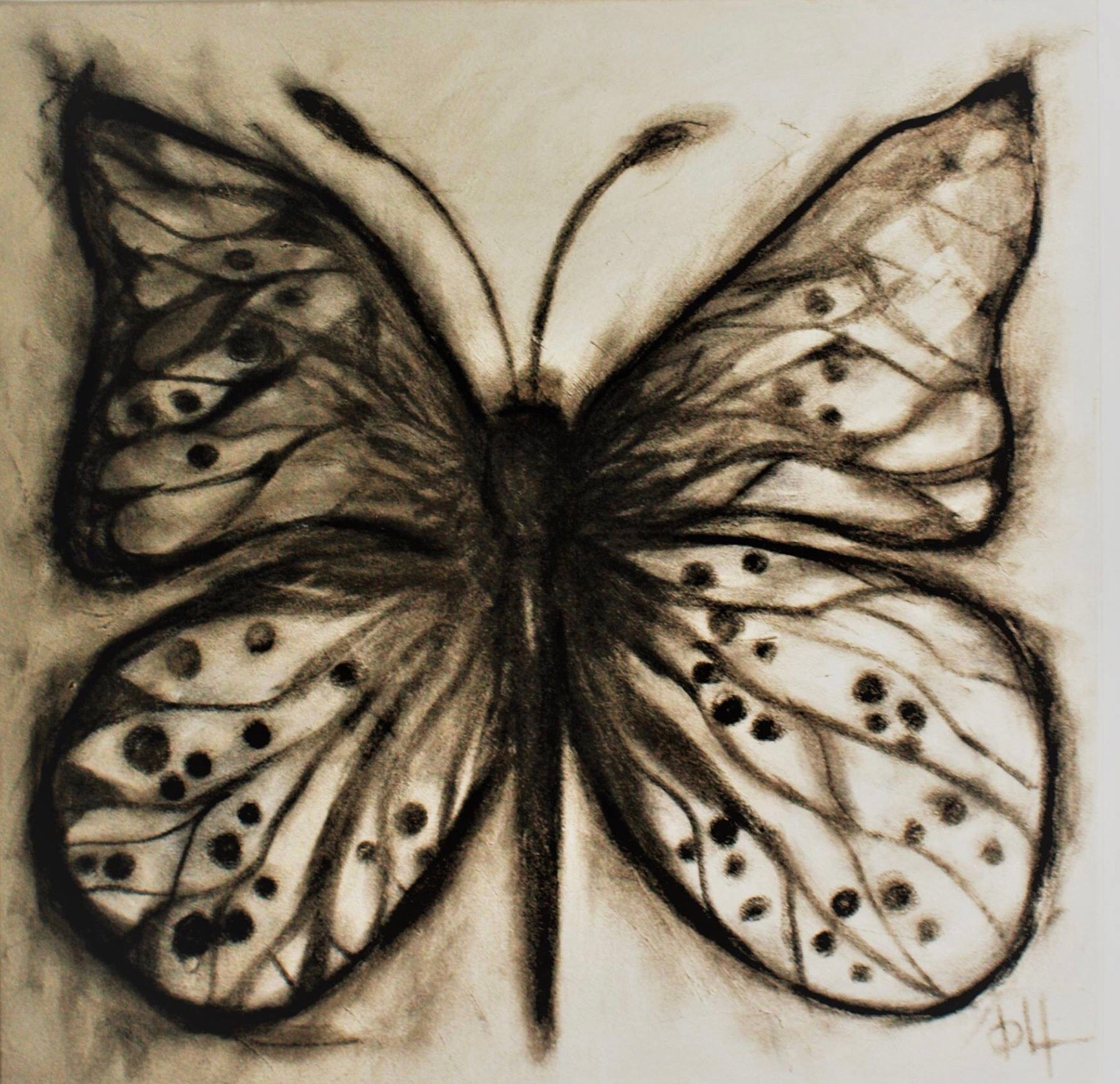 Farfalla mia