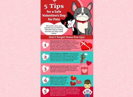 Valentine's Day Safety Tips