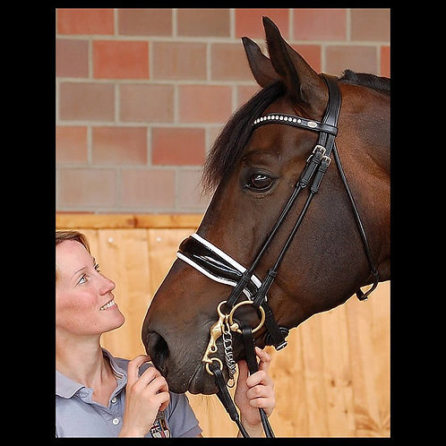 Dy'on Dressage Large Rolled Crank Double Bridle