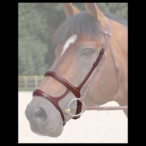 Dy'on New English Double Noseband