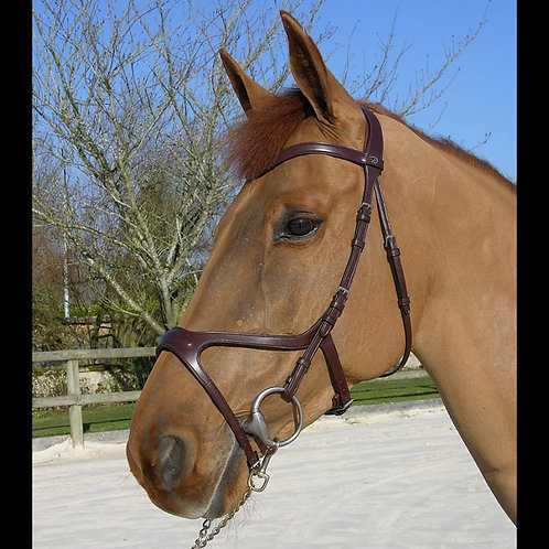 Dy'on X-FIT Anatomic Bridle