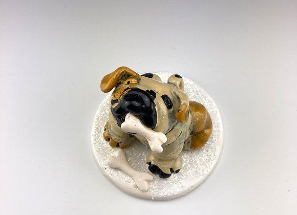 English Bulldog (Bone)